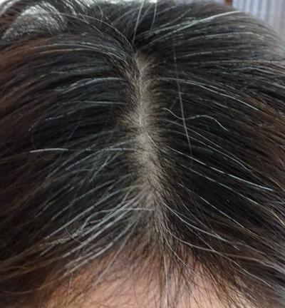 50代 白髪まじりのヘア