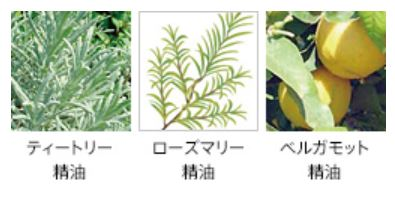 フォルム 植物由来の成分